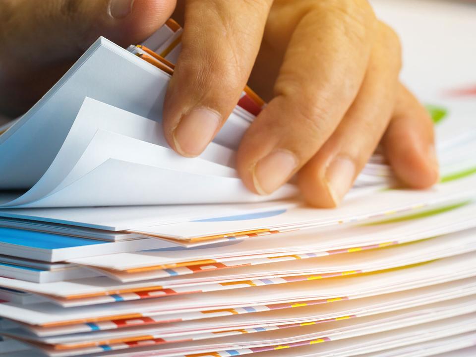 Документы для детского лагеря