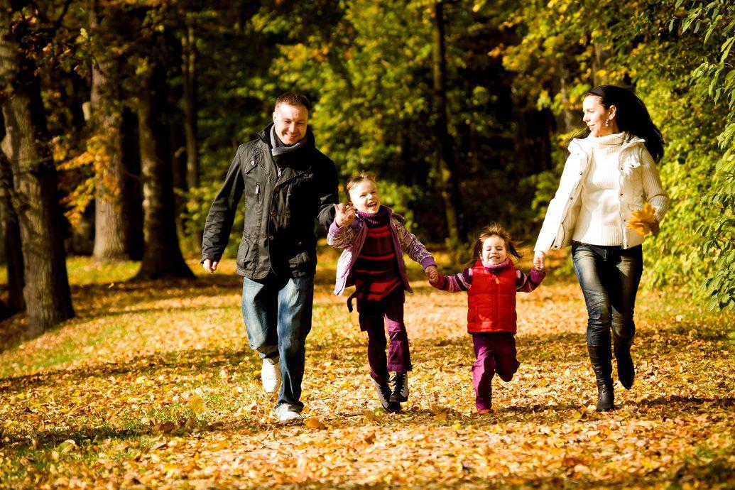 Приглашаем родителей с детьми в «Green village»